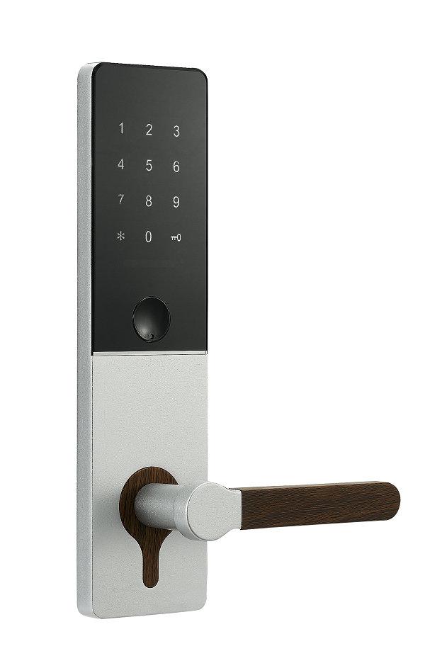 TTlock Hotel Lock JYC-H3215T Silver